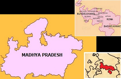 MP: Movement for Vindhya Pradesh, legislator moves ahead, comes up with flag and logo